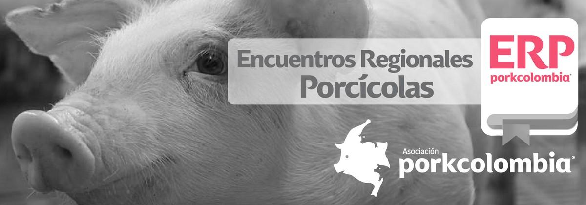 https://www.porkcolombia.co/wp-content/uploads/2018/05/ERP.jpg