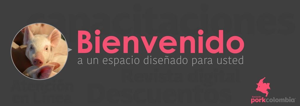 https://www.porkcolombia.co/wp-content/uploads/2018/05/banner_micrositio_1.jpg