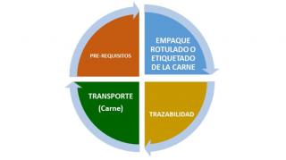 https://www.porkcolombia.co/wp-content/uploads/2018/07/diagrama_sello_rojo-320x179.png