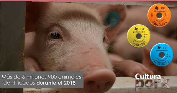 https://www.porkcolombia.co/wp-content/uploads/2019/04/entrada-pork-15-04-19-1.png