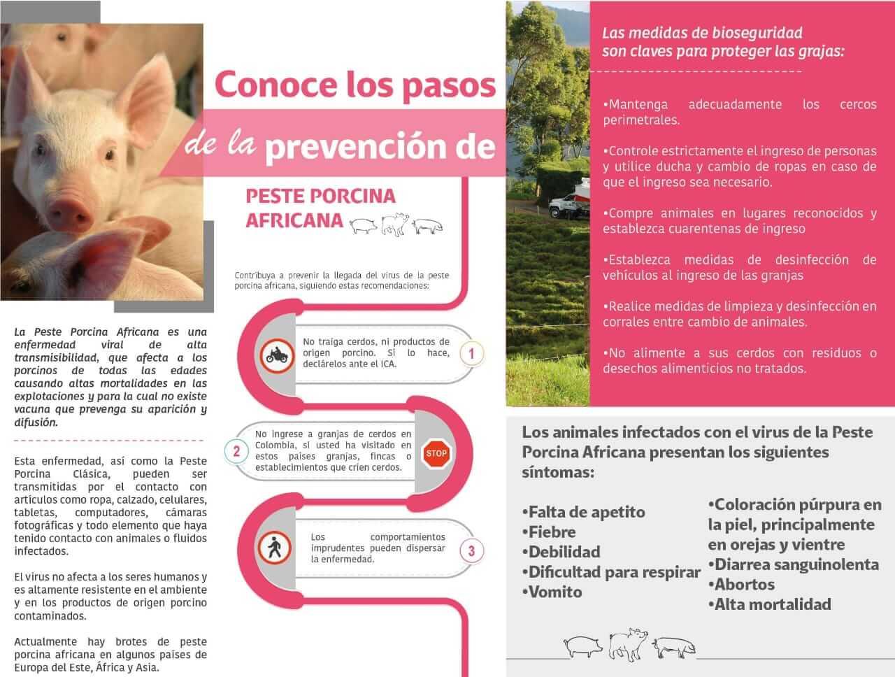 https://www.porkcolombia.co/wp-content/uploads/2019/05/IMG-20190523-WA0014.jpg