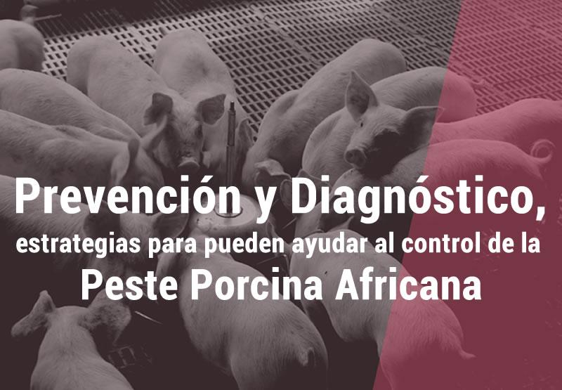 https://www.porkcolombia.co/wp-content/uploads/2019/05/banner-estrategias-peste.jpg