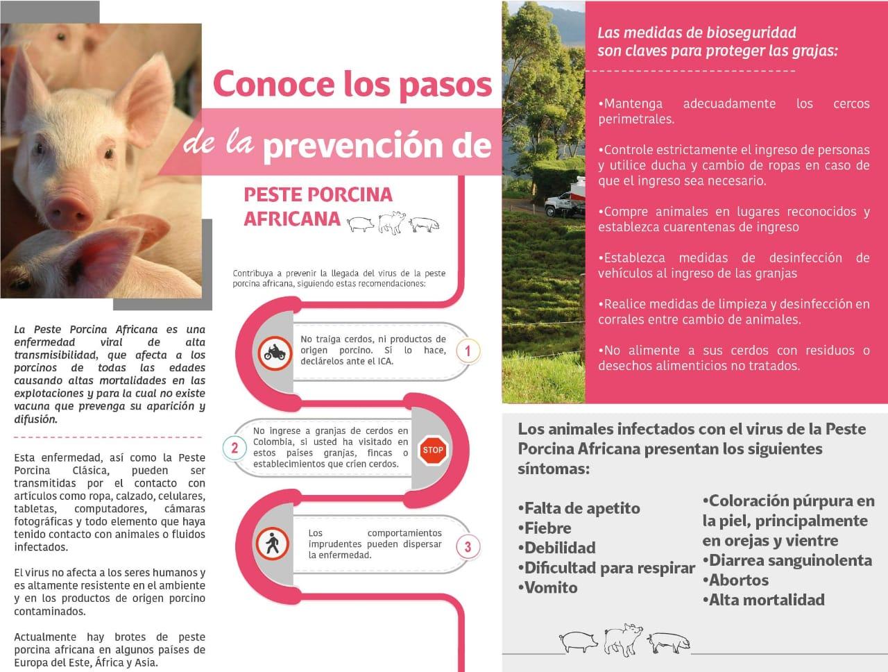https://www.porkcolombia.co/wp-content/uploads/2019/05/peste-porcina-africana-img.jpg