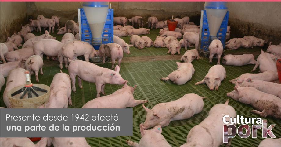 https://www.porkcolombia.co/wp-content/uploads/2019/06/es-1.jpg