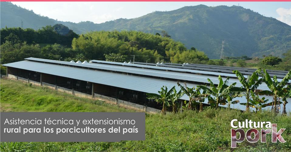 https://www.porkcolombia.co/wp-content/uploads/2019/10/asistencia-tecnica-extensionismo.jpg