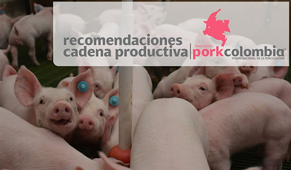 https://www.porkcolombia.co/wp-content/uploads/2020/03/productiva.jpg