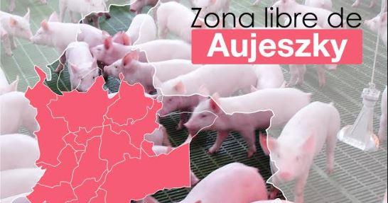 ICA declara la primera zona libre de la enfermedad de Aujeszky en Colombia