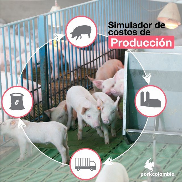https://www.porkcolombia.co/wp-content/uploads/2020/06/simulador_de_costos_porkcolombia-640x640.jpg