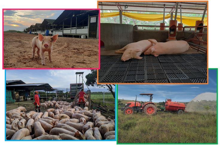 https://www.porkcolombia.co/wp-content/uploads/2020/10/1erConcurso-Fotografía.jpg
