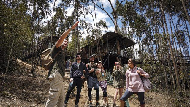 Porkcolombia lanza nueva temporada  de la serie web Friendzone